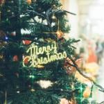 オーストラリアではクリスマスを家族と一緒に過ごすのか。ホームステイ先のクリスマスパーティへ行ってきたときの話